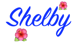 File:Shelby Name.png