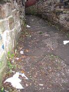 Litter-alley