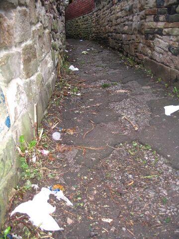 File:Litter-alley.jpg