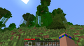 Thumbnail for version as of 17:17, August 1, 2013