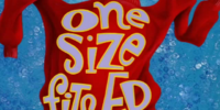 One Size Fits Ed