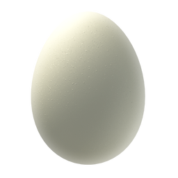File:Egg 1.png