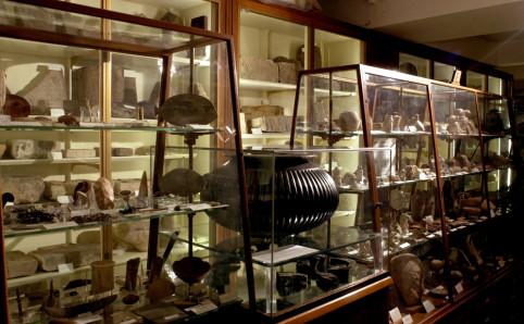 File:Petrie Museum.jpg