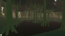 Swamp 1