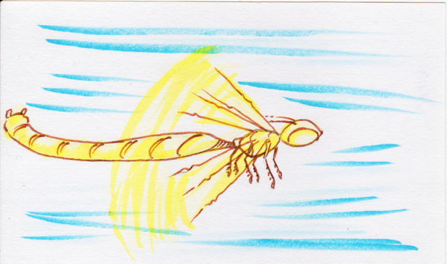File:Ukai sketch card.png