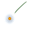 Clothing Spring Bohemian Flower
