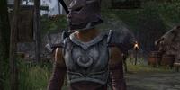 Jode's Chariot Guard
