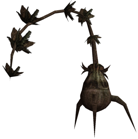 File:Morrowind Bittergreen plant.png