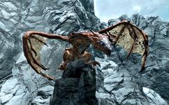 Dragon TopOne