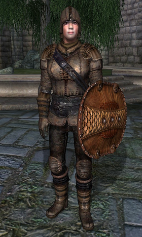 File:Leather Armor (Oblivion).png