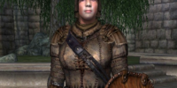 Leather Armor (Oblivion)