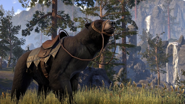 File:Black Bear Mount.png