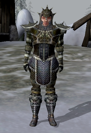 File:Skaal Honor Guard.jpg