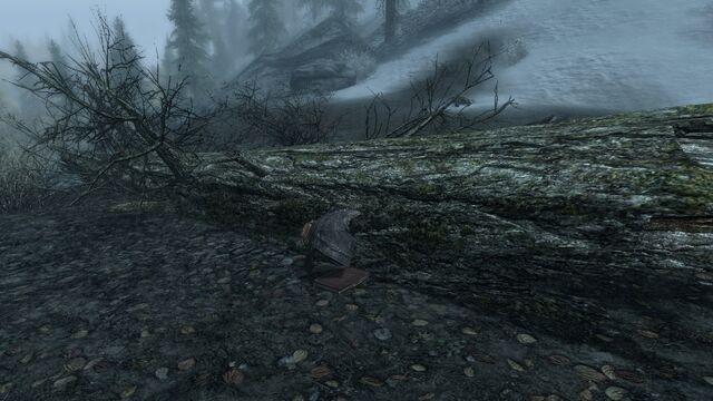 File:Forest Stash.jpg