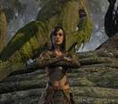 Treethane Dailithil