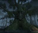 Brackenleaf (Tree)