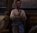 Bilami the Caravaneer