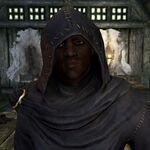 Falion Skyrim