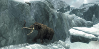 Mammoth (Skyrim)