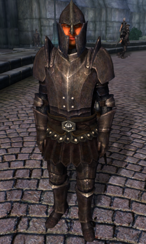 File:TESIV Character Test Guard.png