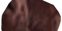 Human Flesh (Morrowind)
