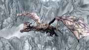 Legendary Dragon Arcwind 2