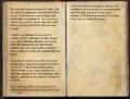 Journal of a Fallen Officer 2 of 2.png