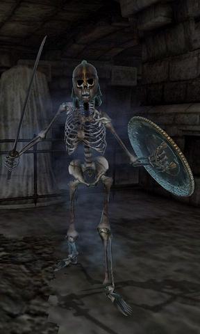 File:Skeleton of Rielus.png