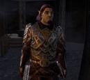 Siege Commander Dulph