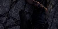 Kerthor Wood-Hewer