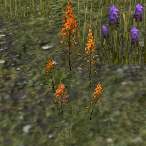 File:Mountainflower.png