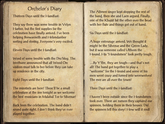 File:Orchelor's Diary 1 of 2.png