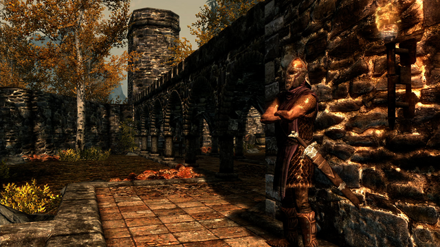 File:Riften Guard.png