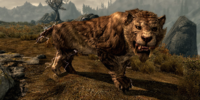 Sabre Cat (Skyrim)