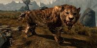 Sabre Cat (Skyrim)