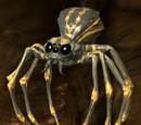 Oil Spider (Scroll)