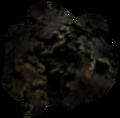 Morrowind Black Lichen.png