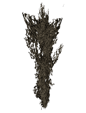 File:Taproot O.png