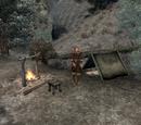 Aerin's Camp