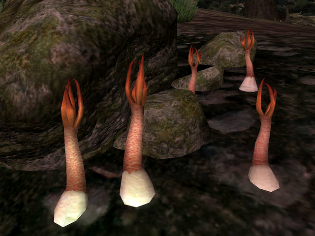 File:Stinkhorn Cap.png