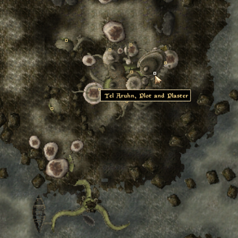 File:Tel Arhun Plot and Plaster - Local Map - Morrowind.png