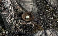 Skyrim brids nest