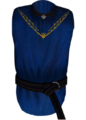 TESIV Clothing Arch-Mage's Robes.png