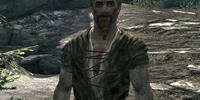 Roggi Knot-Beard