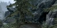 Moss Mother Cavern