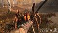 SkyrimSwitch Spiders.jpg