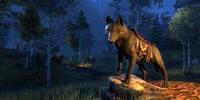 Doom Wolf