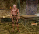 Main Quest (Morrowind)
