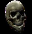 Bones Skull.png