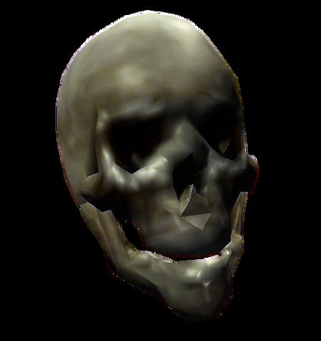 File:Bones Skull.png
